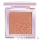 BSC Diva Absolute Blusher