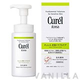Curel Sebum Trouble Care Sebum Care Foaming Wash